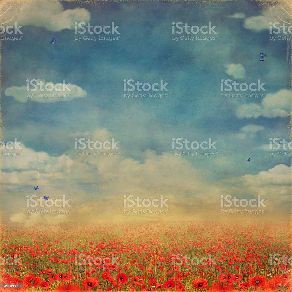 Rojo poppies campo con cielo azul - ilustración de arte vectorial