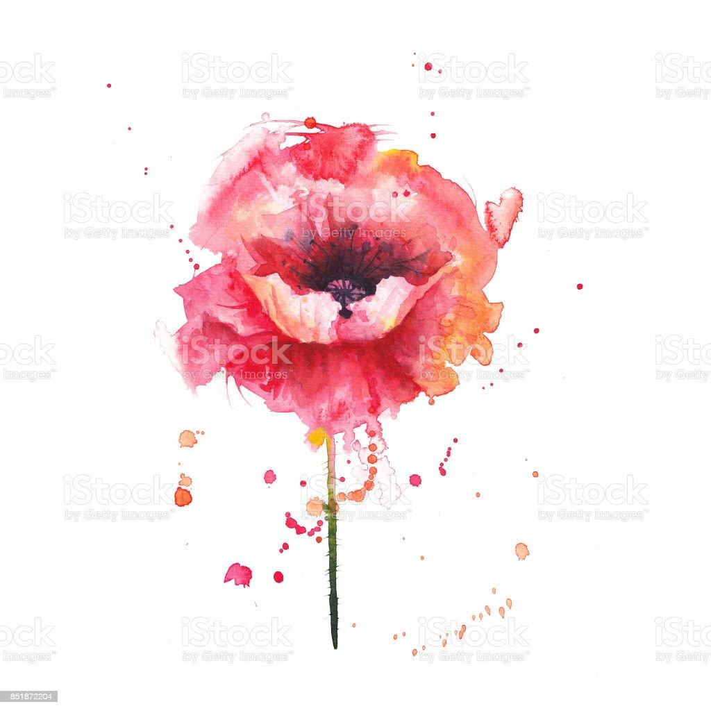 poppies rojo - ilustración de arte vectorial