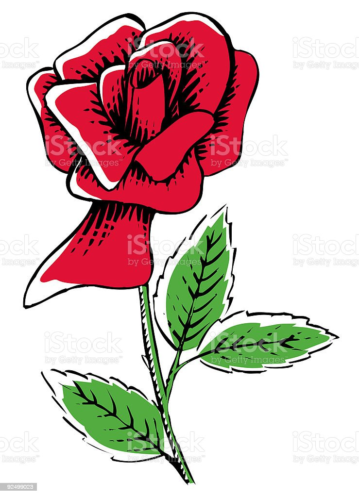 Red rose royalty-free red rose stock vector art & more images of color image