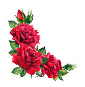 Red roses.Please see some similar pictures from my portfolio: