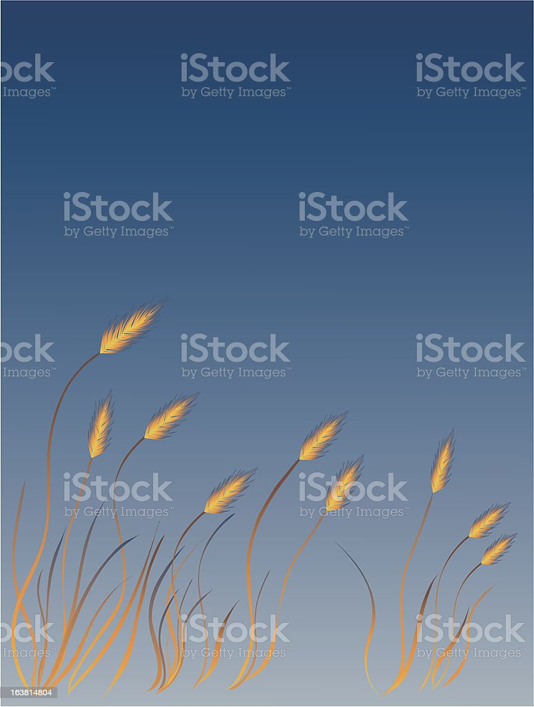 Reed Grass royalty-free stock vector art