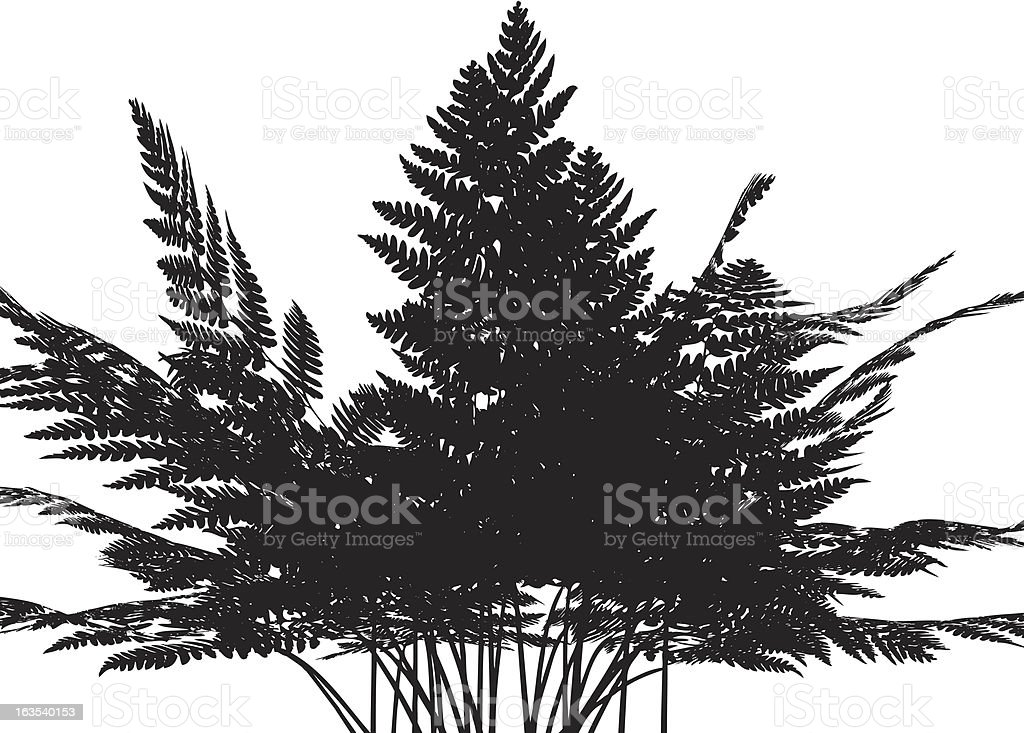 Fern silhouette royalty-free stock vector art