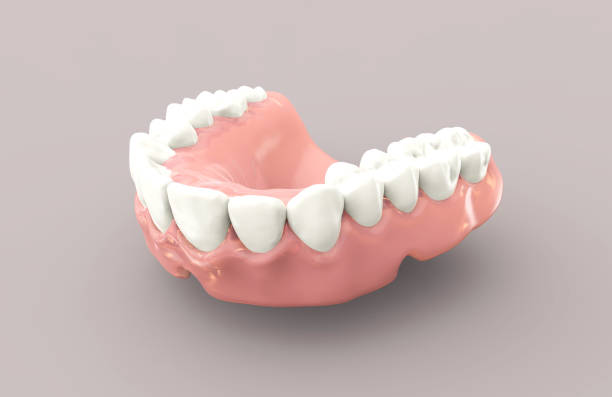 3D rendering dentures vector art illustration