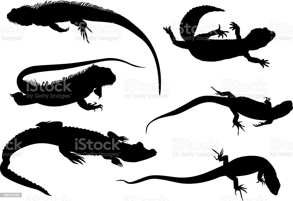 savannah monitor coloring pages | Reptiles Set Stock Vector Art & More Images of Amphibian ...