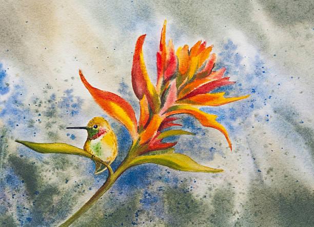 Resting Hummingbird vector art illustration