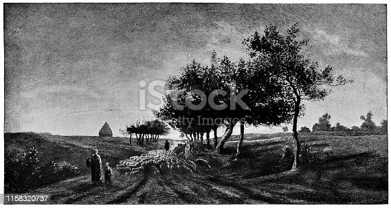 Return of the Flock by Charles-Francois Daubigny (circa 19th century). Vintage etching circa late 19th century.