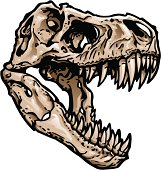 """Skull of a T Rex. Skull and Skeleton layered separately. Major elements layered separately for easy editing. 2 spot colors plus black. Simple gradients and shapes for easy printing, separating and color changes. Black and white version also included. File formats: EPS and JPG"""