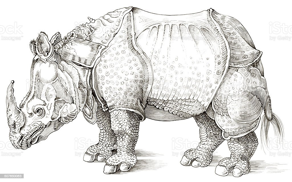 Rhinoceros Wearing Clothing vector art illustration