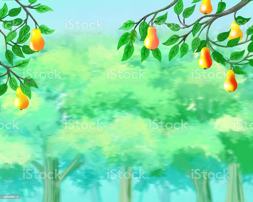 Ripe Pears on the Background of a Summer Garden royalty-free ripe pears on the background of a summer garden stock vector art & more images of backgrounds