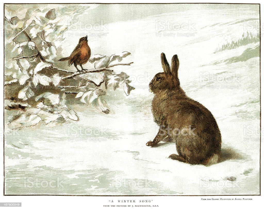 Robin And Rabbit In The Snow Stock Illustration Download Image Now Istock