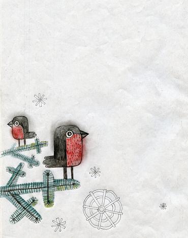 Robins illustration