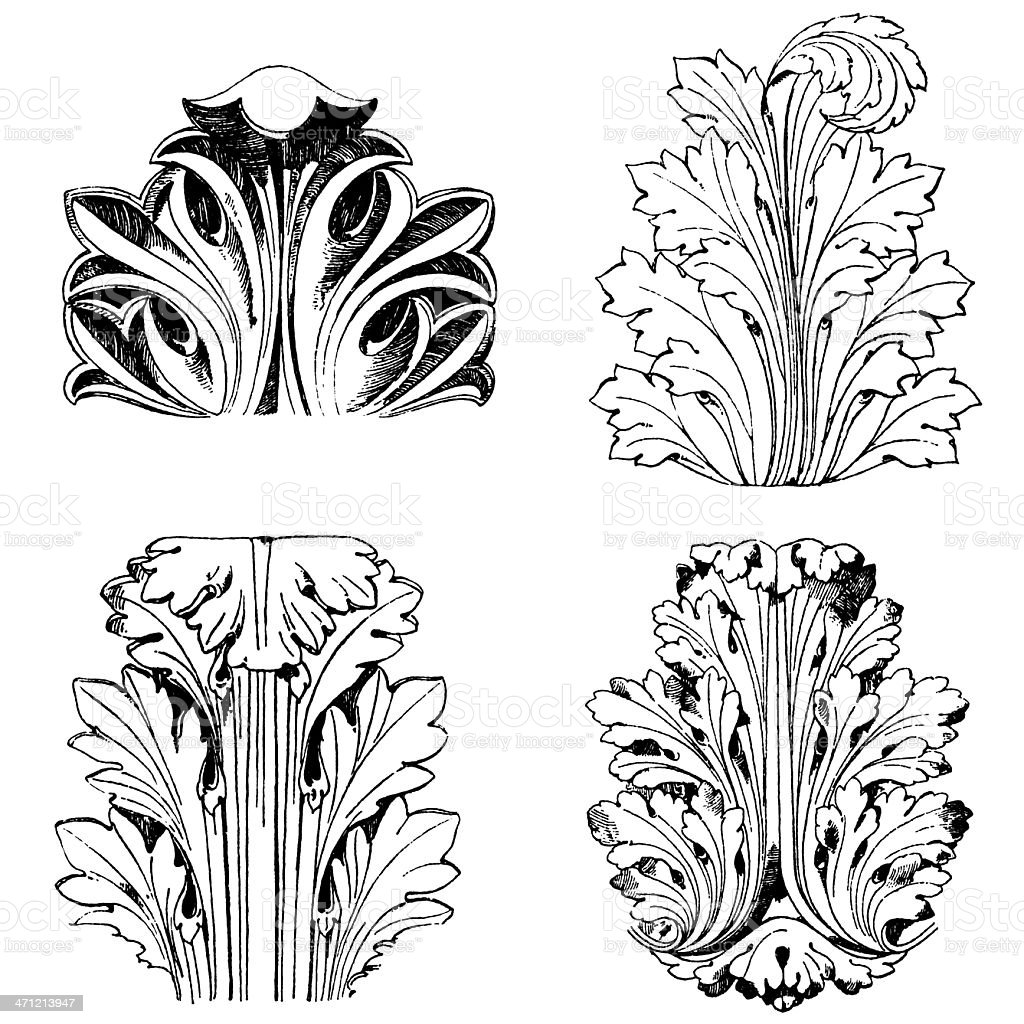 Roman Acanthus leafs vector art illustration