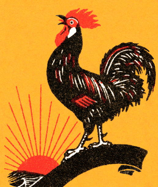 Royalty Free Rooster Crowing Clip Art, Vector Images ...