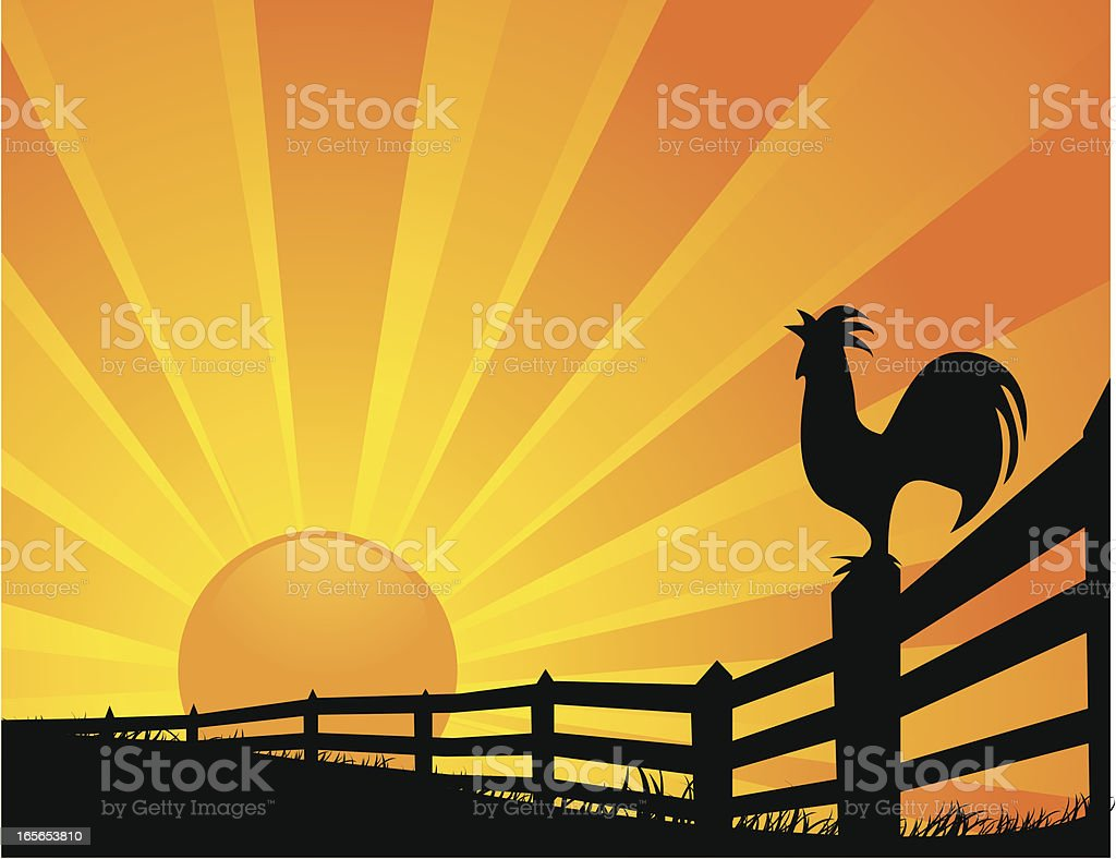 Rooster Sunrise vector art illustration