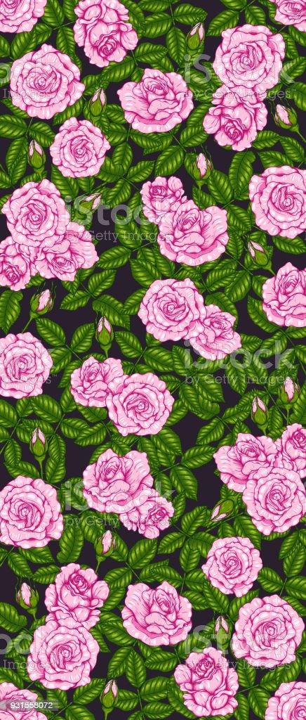 Rosa Queen Elizabeth Rose For Wallpaper Stock Illustration Download Image Now Istock