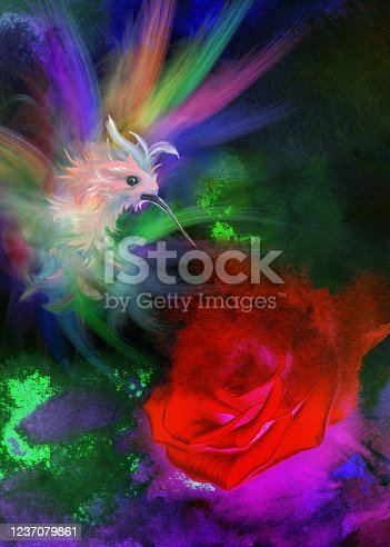 istock rose and bird of Paradise 1237079861