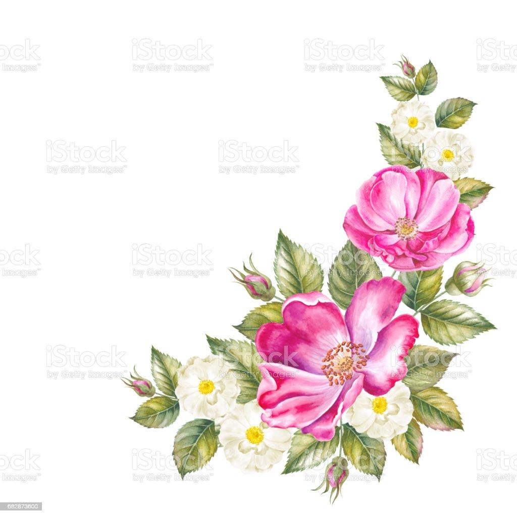 Rosebush pattern from pink rose wedding drawings watercolor painting rosebush pattern from pink rose wedding drawings watercolor painting greeting cards m4hsunfo
