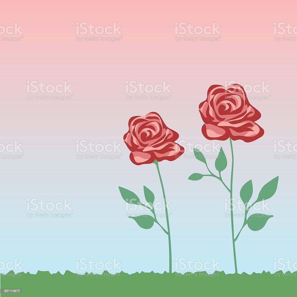 Rosen im Garten – Vektorgrafik