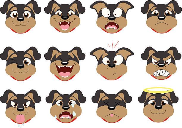 ilustraciones, imágenes clip art, dibujos animados e iconos de stock de emoticonos de rottweiler - lágrimas de emoji alegre
