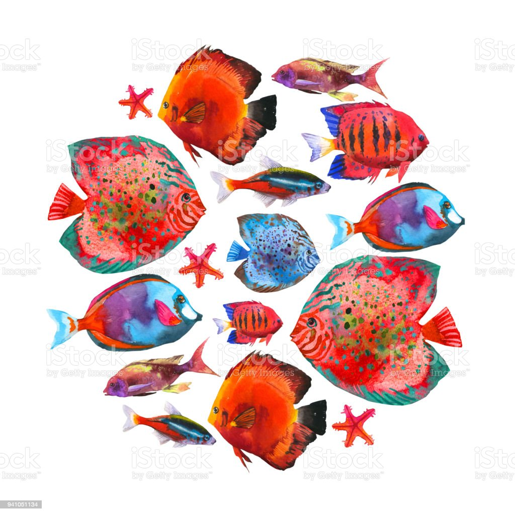 Round Composition With Tropical Fish Watercolor Illustration With ...