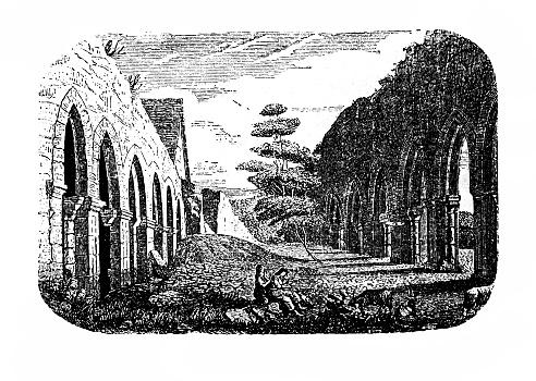 Ruins of Memleben Monastery