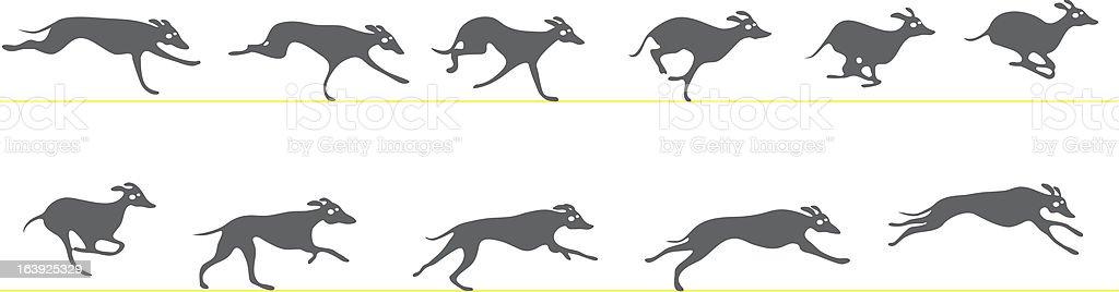 Running greyhound vector art illustration