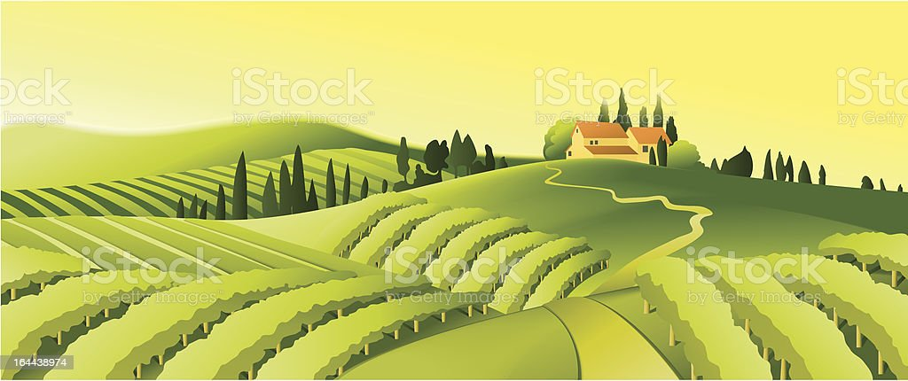 Rural landscape with vineyard royalty-free stock vector art