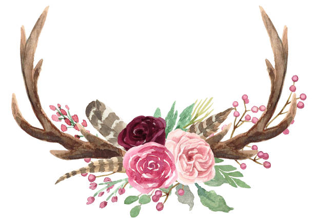 rustic watercolor floral antler bouquet - deer antlers stock illustrations, clip art, cartoons, & icons
