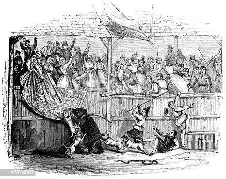 """""""Sackerson"""" the most famous bear at a bear-baiting match in a beargarden in England (circa 17th century) from the Works of William Shakespeare. Vintage etching circa mid 19th century."""