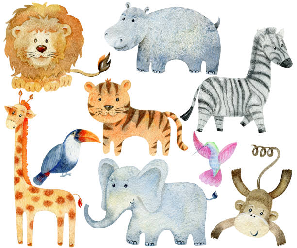 stockillustraties, clipart, cartoons en iconen met safari dieren set - afrikaanse vogel