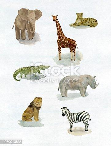 istock Safari Animals Vol.2 1260010836