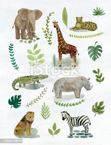 istock Safari Animals Vol.2 1260010844