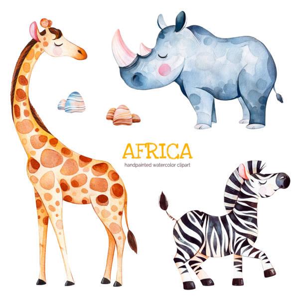 safari collection with giraffe, rhino, zebra, stones - africa travel stock illustrations, clip art, cartoons, & icons