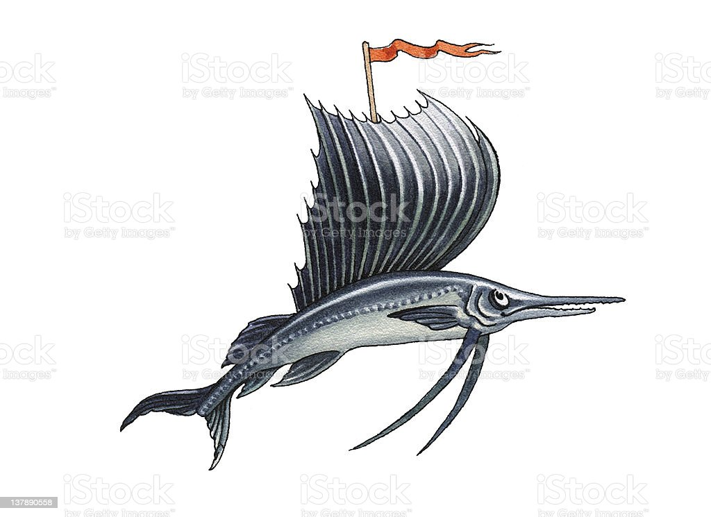 Sailfish Stock Illustration - Download Image Now - iStock