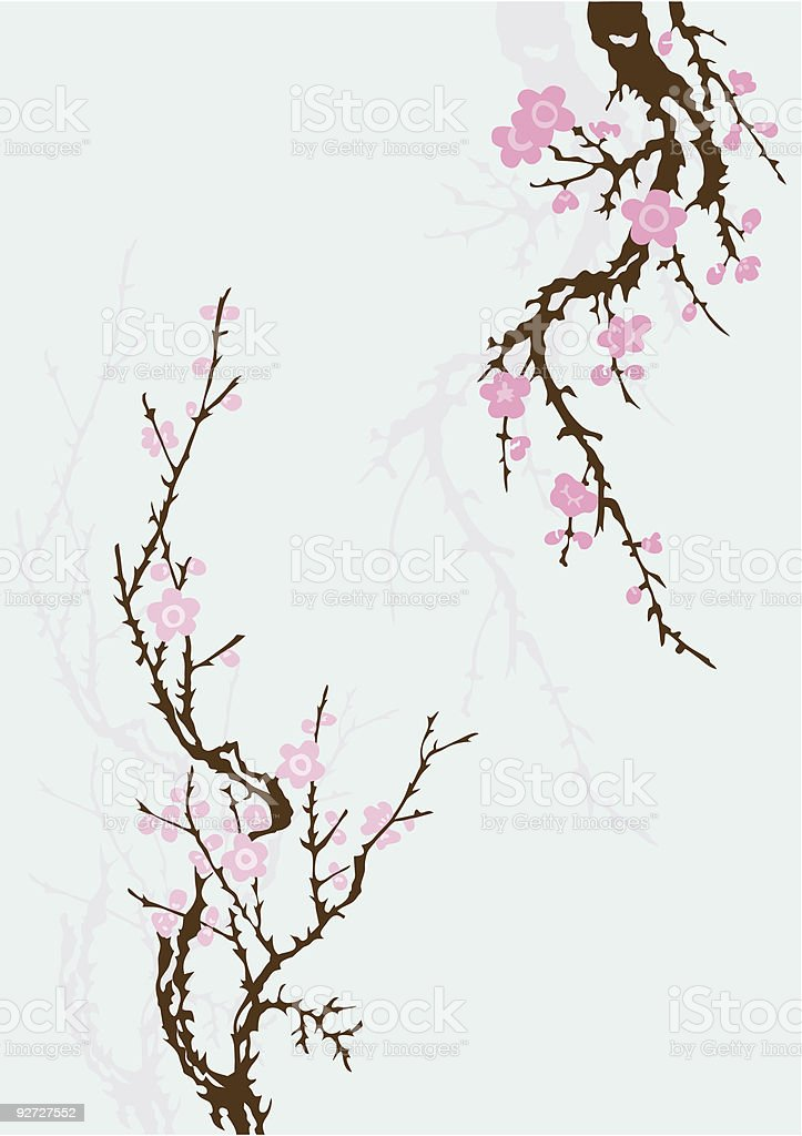 Sakura Branch With Flowers Stock Illustration Download Image Now Istock