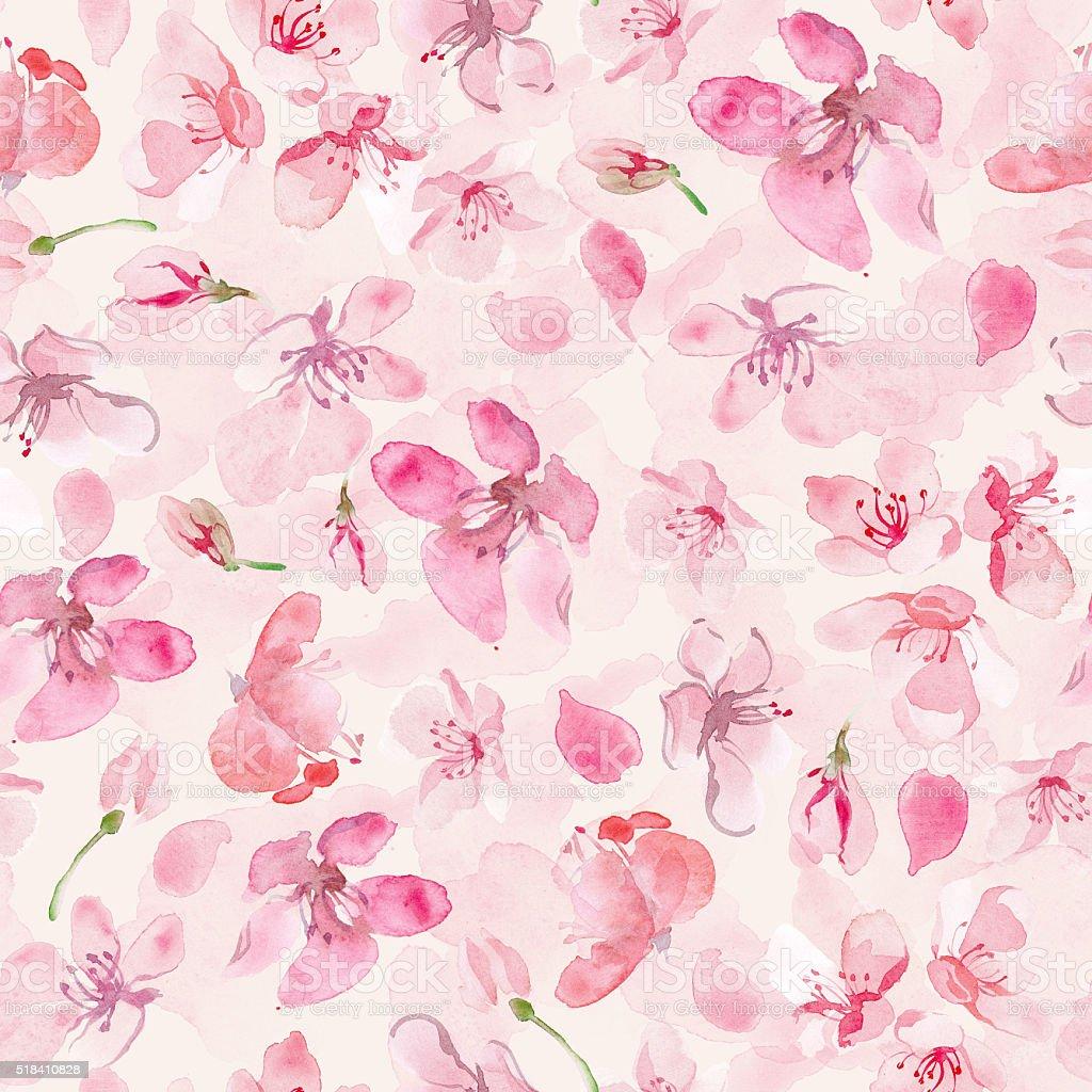 sakura flower background vector art illustration