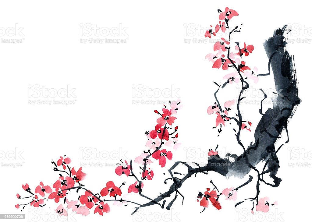 Sakura. Illustration of blossom tree. vector art illustration