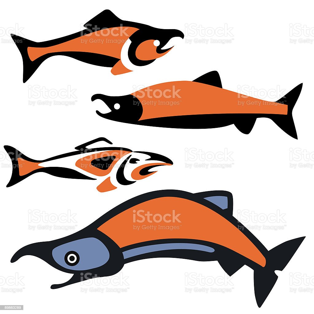 salmon.eps royalty-free salmoneps stock vector art & more images of alaska - us state