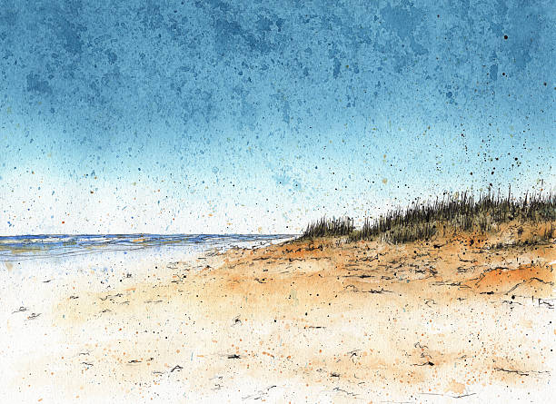 Sand dunes at the beach A watercolor illustration of sand dunes at the beach. RETROROCKET stock illustrations