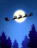 Santa's sleigh over Christmas trees