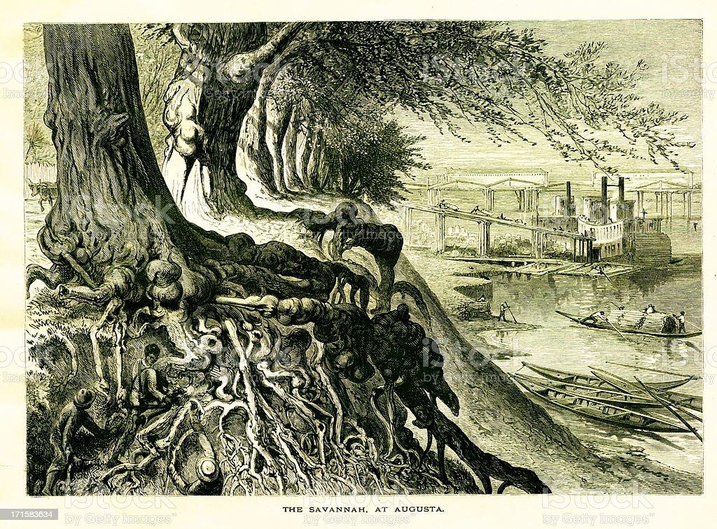 Savannah River, Georgia, USA | Historic American Illustrations royalty-free stock vector art