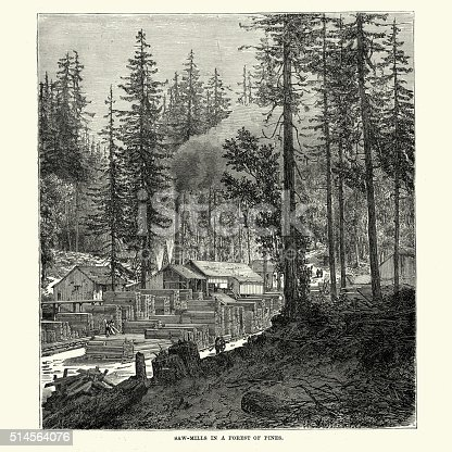 Vintage engraving showing Saw mills in a North American Pine Forest, 19th Century