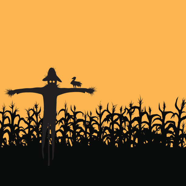 scarecrow - corn field stock illustrations, clip art, cartoons, & icons