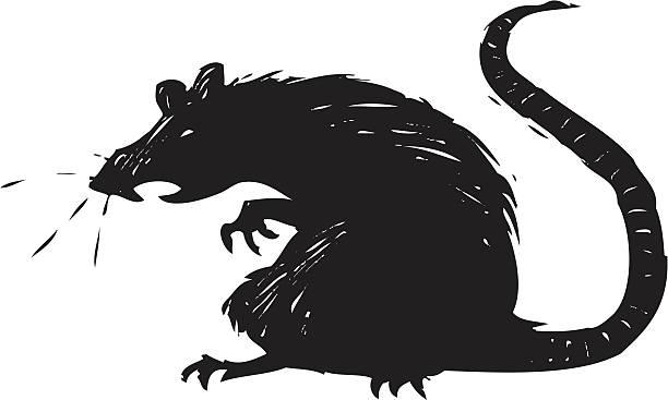scary rat vector art illustration