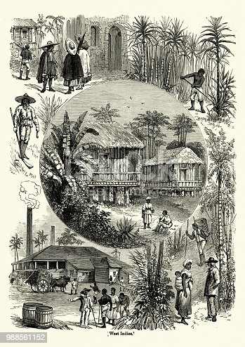 Vintage engraving of Scenes from the West Indies in the 19th Century. Sugar cane plantation and refinery