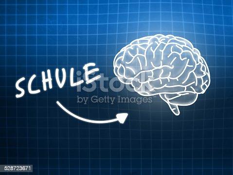 istock Schule brain background knowledge science blackboard blue 528723671