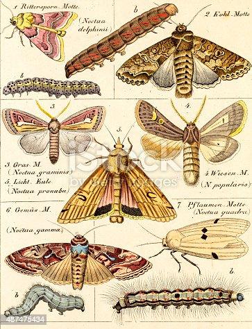 istock science illustration 487475434