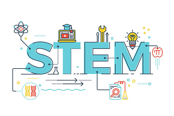 STEM - science, technology, engineering, mathematics Illustration of STEM - science, technology, engineering, mathematics education word typography design with icons ornament elements plant stem stock illustrations