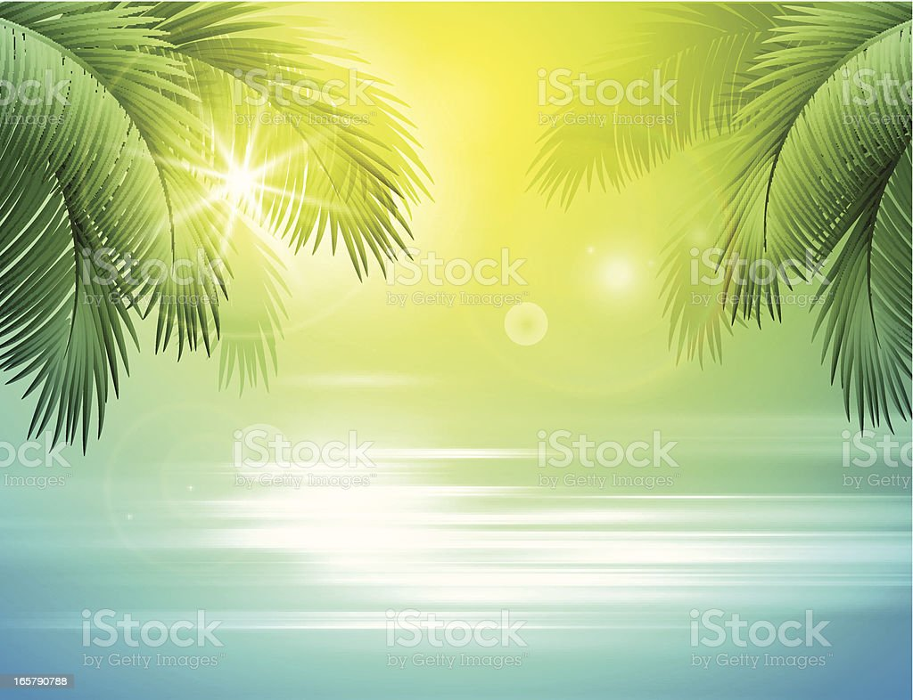 Sea and palm landscape vector art illustration