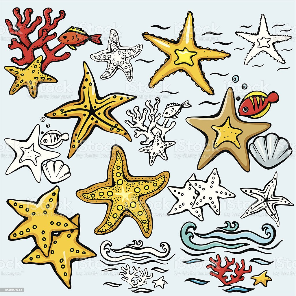 Sea World III: Star-fishes ( Vector) royalty-free stock vector art